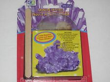 Growing PURPLE Crystals - Fun Science Toy In Action - Great Kids Science Project