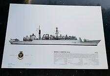 Squadron Prints HMS Cornwall F99 Print No. W17 Feb 1988