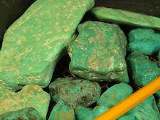 1 POUND NATURAL COCHISE ARIZONA HUGE TURQUOISE NUGGETS