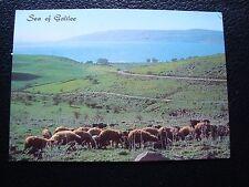 ISRAEL - carte postale 1983 sea of galilee (cy90)