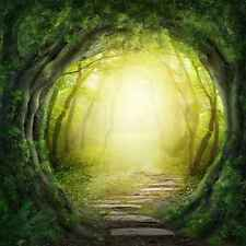 Wall Mural Forest Path Large Mystical Repositionable Vinyl Interior Art Decor