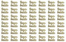 42 Hens Gold Team Bride Faux Metallic Sparkle Temporary Tattoos Hens Amy Tattoos