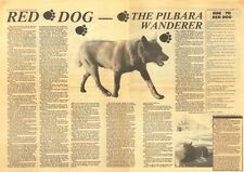 Red Dog Collectable Tribute Print Year 1979 Poster + Free Red Dog Bumper Sticker