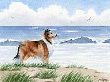 ROUGH COLLIE Beach DOG Watercolor 8 x 10 Art Print Signed DJR