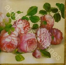 4 Servietten Napkins englische Rosen - Blumen - English Roses - cream - ro133