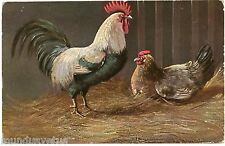 ARTIST SIGNED. MÜLLER. COQ. POULE. HEN. ROOSTER. ANIMALS. COOP. FOWL