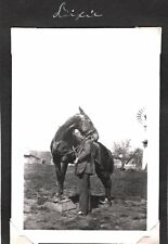 VINTAGE CALIFORNIA ANIMAL TRAINER HORSES TRAINS HORSES FOR SHOWS MOVIES PHOTO