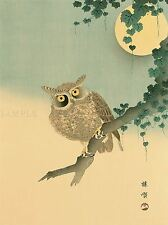 NATURE BIRD JAPAN KONO BAIREI OWL MOON POSTER ART PRINT PICTURE BB93A