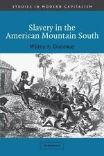 Slavery in the American Mountain South (Studies in Modern Capitalism) by Dunawa
