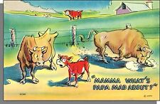 40's Comic Postcard #GC408 - Mamma, What's Papa Mad About?