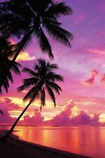 Sunset Poster! Tropical Island Beauty Palm Trees Purple Sky Sandy Beach New!