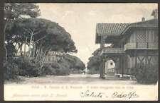 Italy Postcard Pisa R Tenuta Di S Rossore Viale Maggiore 1900 L@@K
