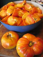 Tomato seeds Virginia Sweets organic vegetable heirloom - 40 seeds!