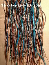Lot 30 Grizzly Feathers Hair Extensions saddle XL Turquoise Natural Browns NBT