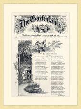 Die Gartenlaube In Vaters Garten Emil Rittershaus Titelblatt  HOLZSTICH II 869
