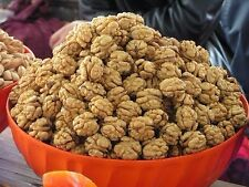 1KG The Best Kashmiri Snow White Walnut ( Akhrot )