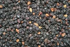 Elderberries Whole Dried - Sambucus nigra - Pure & Organic - 16 oz (1 lb)