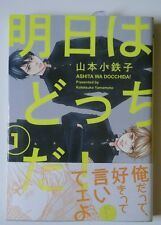 Ashita wa Docchi da!! by Yamamoto Kotetsuko | Japanese Yaoi Manga
