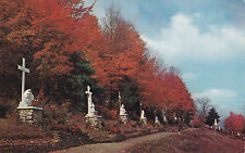 Way of the Cross Shrine of Our Lady of La Salette ENFIELD New Hampshire Postcard