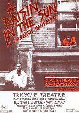 A RAISIN IN THE SUN TRICYCLE THEATRE Theatre Flyer Handbill