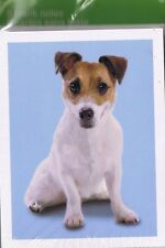 PUPPY  NOTE CARDS & ENVELOPES NEW IN PACKAGE OF 8 COLLECTIBLE CUTE DOG