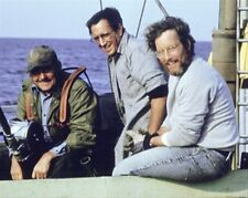 JAWS MOVIE PHOTO Poster Print 24x20""