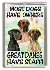 "Great Dane Dog Fridge Magnet ""Most Dogs Have Owners Great Danes Have Staff!"""