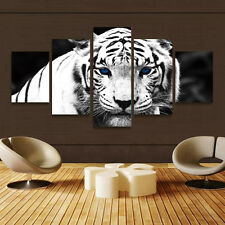 HD Canvas Print home decor wall art painting White tiger 5pc(no frame)#125