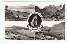 A Wee Scotch Frae Brodick Isle Of Arran Real Photograph 11 Sep 1958 Killip