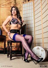 Suspender stockings Nylon stockings, RHT Nylons, Size XL, Electric Blue