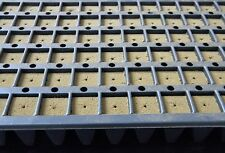 (2) SEED STARTER TRAYS WITH MEDIUM, 102 PLUGS EACH TRAY, HYDROPONIC SEED TRAYS