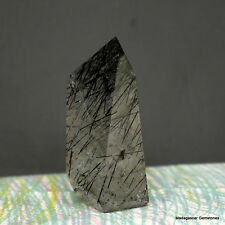 "3.08"" Black Tourmaline Included Quartz Crystal Shcorl Tourmalated Point, Tmq33"