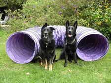 Very Durable Vinyl 12' Tunnel Dog Agility Equipment