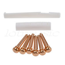 6 Pcs Brass Bridge Pins Bone Saddle Nut Slotted Set for Acoustic Guitar Parts