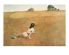 Christina's World  Andrew Wyeth Farms landscapes Print Poster