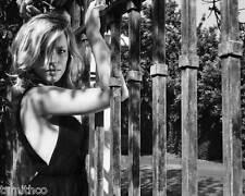 Rachel McAdams 8x10 Photo 011