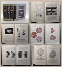 Meyer Lehrbuch der Strahlentherapie 1929 4 Bde. (v.5) Gynäkologie Chirurgie xz
