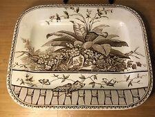Antique Turkey  Platter G W TURNER & SON England Pattern Brazil brown/white dish