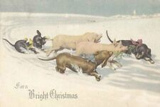 Dachshund Dog Pups & Pigs Feiertag 1915 8 LARGE New Blank Christmas Note Cards