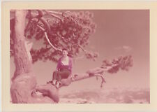 Vintage 50s PHOTO Young Woman On Vacation Sitting In Tree Soft Focus