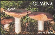 Guyana 1991 Fungi/Mushrooms/Plants/Nature 1v m/s (b2465)