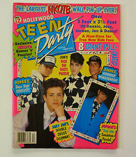 Teen Party 90s Poster Magazine 8 Fold-out Posters NKOTB New Kids on the Block