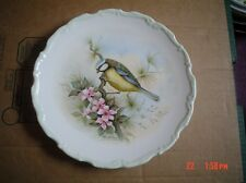 Royal Albert Collectors Plate BLUE TIT From THE WOODLAND BIRDS COLLECTION