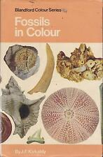 BLANDFORD COLOUR SERIES FOSSILS IN COLOUR GEOLOGY ROCKS FOSSIL COLLECTING