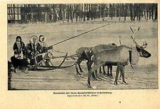 Samojeden mit ihrem Renntierschlitten in Petersburg * Bilddokument 1901