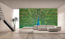 Peacock Wall Mural Photo Wallpaper GIANT DECOR Paper Poster Free Paste