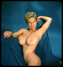 1960s Nude Virginia Bell showing off huge breasts  8 x 10 Photograph