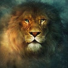 """Animal HD Print on canvas oil painting ,"""" Lion,mighty,Power""""12x12"""