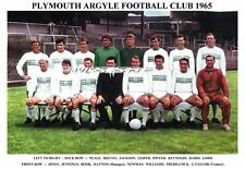 PLYMOUTH ARGYLE F.C. TEAM PRINT 1965 (BOOK/TREBILCOCK/LORD/DWYER)