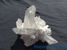 PHANTOMS__HUGE HIGH END DISPLAY CLUSTER__Clear Lemurian Seed Quartz Crystal